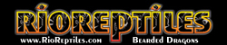 Rio Reptiles Bearded Dragons & Rescue Resource